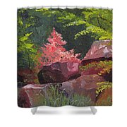 Azaleas - Sun And Shadow Shower Curtain