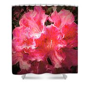 Azaleas 10 Shower Curtain