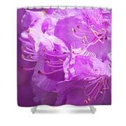 Azaleas Shower Curtain