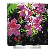 Azaleas With Dew Drop Shower Curtain