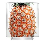 Azores Islands Pineapple Shower Curtain