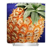 Azores Pineapple Shower Curtain
