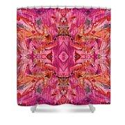 Aztec Kaleidoscope - Pattern 009 - Crimson Shower Curtain