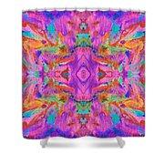 Aztec Kaleidoscope - Pattern 009 Shower Curtain
