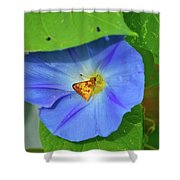 Azure Morning Glory Shower Curtain