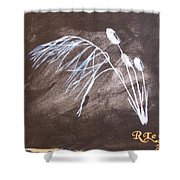 B And W Wild Grass Shower Curtain