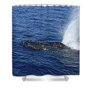 B L O W Shower Curtain