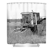 B/w113 Shower Curtain