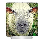 Baaaaaaa Shower Curtain