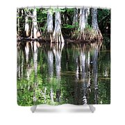 Babcock Wilderness Ranch - Alligator Lake Reflections Shower Curtain
