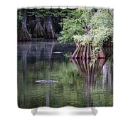 Babcock Wilderness Ranch - Peaceful Alligator Lake Shower Curtain