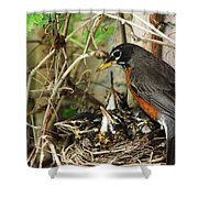 Babes In The Nest Shower Curtain