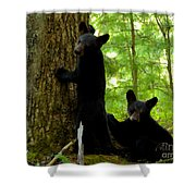 Babes In The Wood Shower Curtain