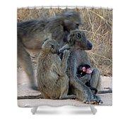 Baboon Family Shower Curtain