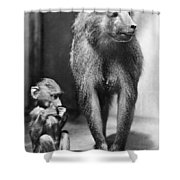Baboon Shower Curtain