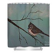 Baby Bird Shower Curtain by Ginny Youngblood