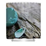 Baby Blue 3 Shower Curtain