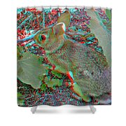 Baby Bunny - Use Red-cyan 3d Glasses Shower Curtain