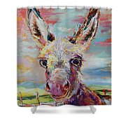 Baby Donkey Painting By Kim Guthrie Art Shower Curtain