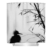 Baby Egret Waits Shower Curtain