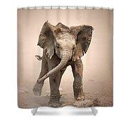 Baby Elephant Mock Charging Shower Curtain