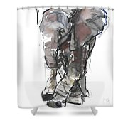 Baby Elephant Study Shower Curtain