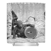 Baby Gorilla And Mom Shower Curtain