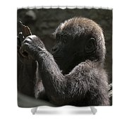 Baby Gorilla3 Shower Curtain