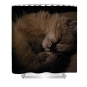 Baby Of Mine Shower Curtain