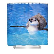 Baby Penguin Floating Shower Curtain