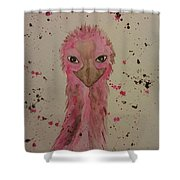 Baby Pink Shower Curtain by Ginny Youngblood