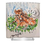 Baby Pony Shower Curtain