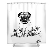 Baby Pug In Flowers Shower Curtain