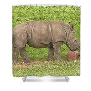 Baby Rhino Chilling Shower Curtain