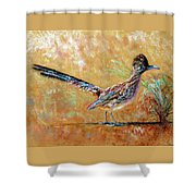Baby Roadrunner Shower Curtain