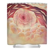 Baby Rose Shower Curtain