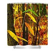 Baby Tree Foliage Shower Curtain