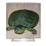 Baby Turtle Looking Up Shower Curtain