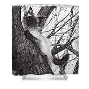 Baby Up The Apple Tree Shower Curtain
