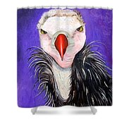 Baby Vulture Shower Curtain