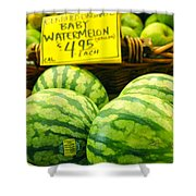 Baby Watermelons Shower Curtain