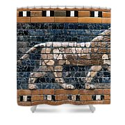 Babylon: Lion Shower Curtain