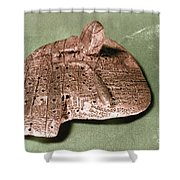 Babylonian Cuneiform Shower Curtain