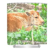 Baby's Home On The Range Shower Curtain