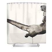 Back Awash   Otter Shower Curtain