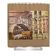 Back Entry Shower Curtain