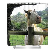 Back Fence Gossip Shower Curtain