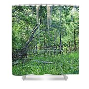 Back In Time In Florida Shower Curtain