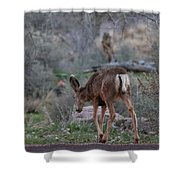 Back Into The Woods - 2 Shower Curtain