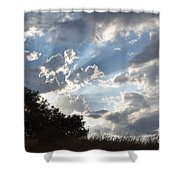 Back Lighting Shower Curtain